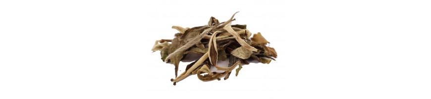 Thé blancs Natures & Parfumés