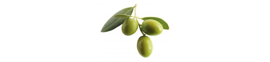 Vente d'huiles de cuisine en ligne